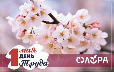флора 1 май